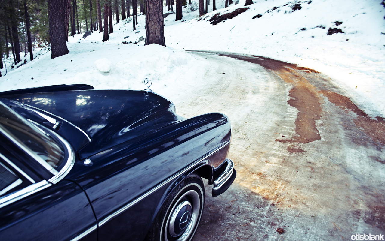 Took The W108 Up Mt.Lemmon
